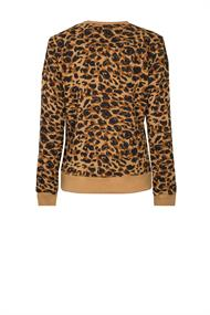 7222 leopard basic sweater
