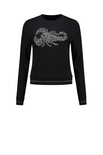 Scorpion sweater n 8-559